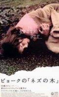ビョークの「ネズの木」 グリム童話より 【VHS】 1986年 ニーツチュカ・キーン ビョーク アイスランド映画
