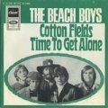 BEACH BOYS/COTTON FIELDS - TIME TO GET ALONE 【7inch】 GERMANY CAPITOL ORG.