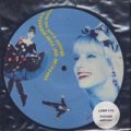 VOICE OF THE BEEHIVE/DON'T CALL ME BABY 【7inch】 UK LONDON LTD.PICTURE DISC ORG.