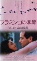 フラミンゴの季節 【VHS】 1998年 シーロ・カペラッリ アンヘラ・モリーナ ダニエル・クスニエスカ